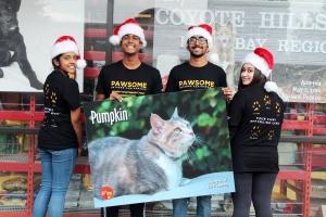Merry Christmas Pet Food Express 2